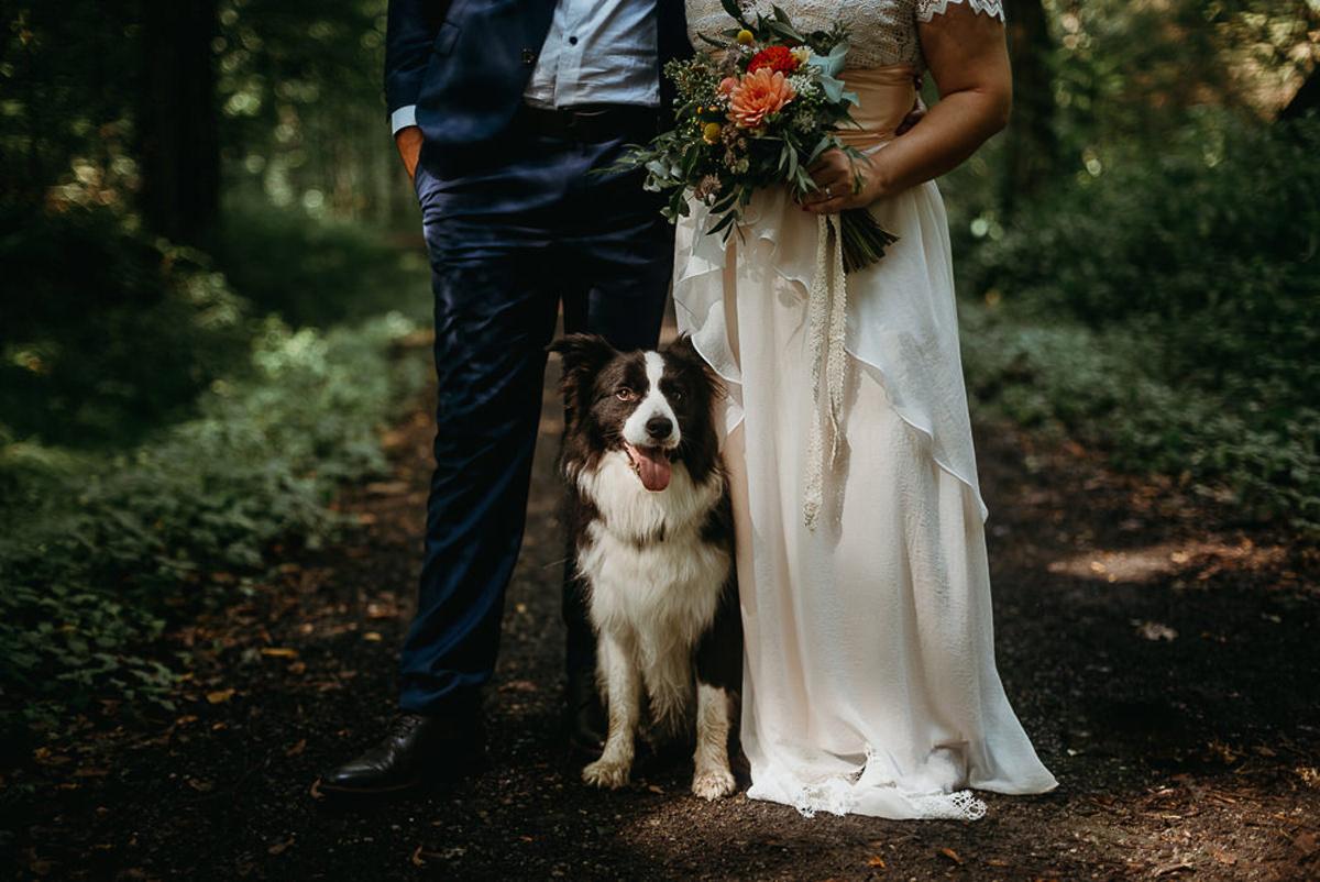 Ślub plenerowy w lesie